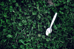 Spoon Fed