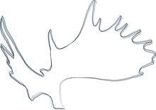 Driven-Divisions-moose-paddle-brand-mark