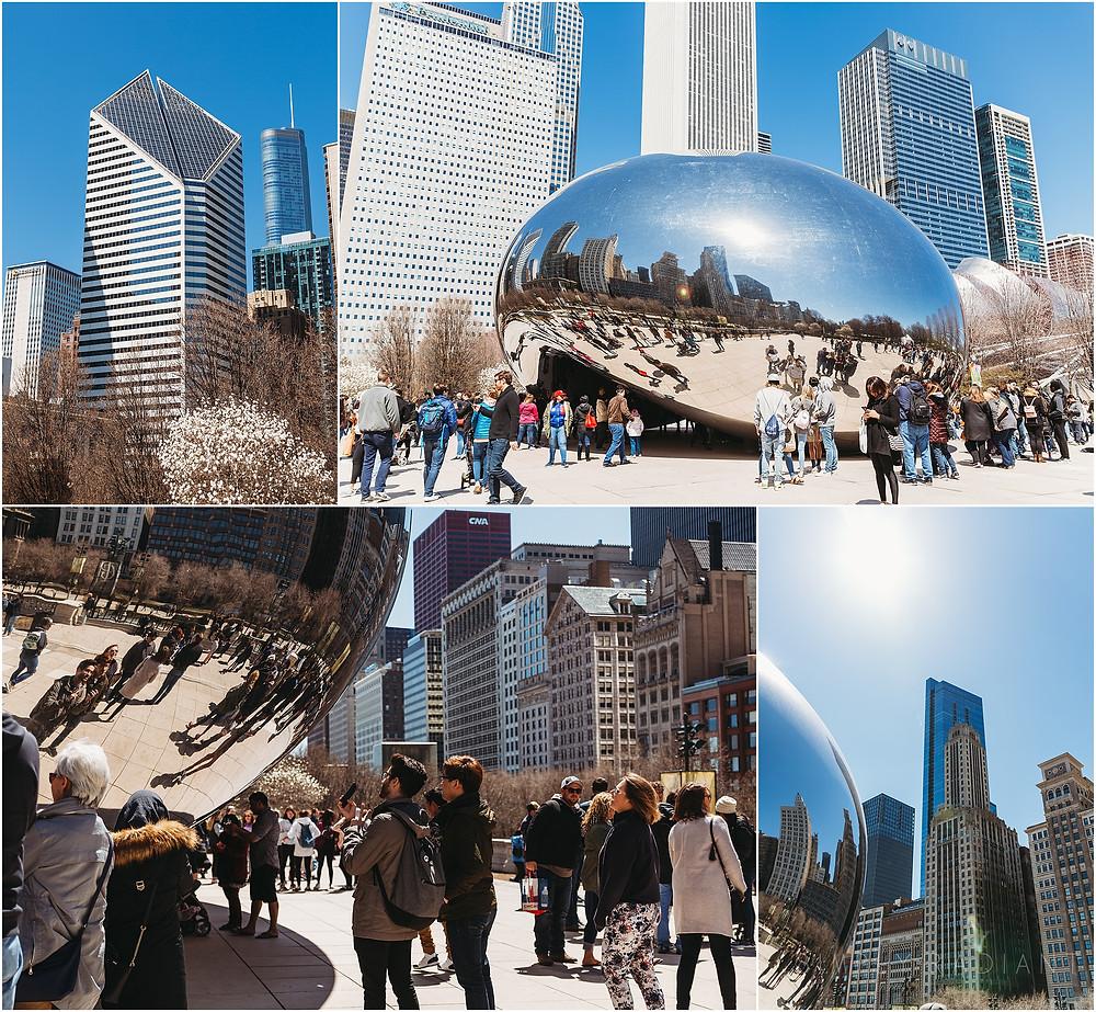 Cloud Gate the chicago bean millenium park