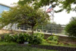 garden3_sm.jpg