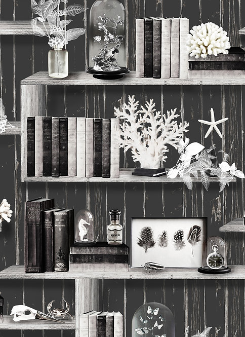 Curiosity Cabinet wallpaper - Charcoal