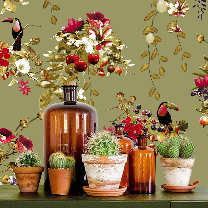green wallpaper with toucans by Good & Craft and cactus plant styling , Good and Craft