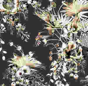 Dark interior styling, tropical wallpaper with hummingbirds