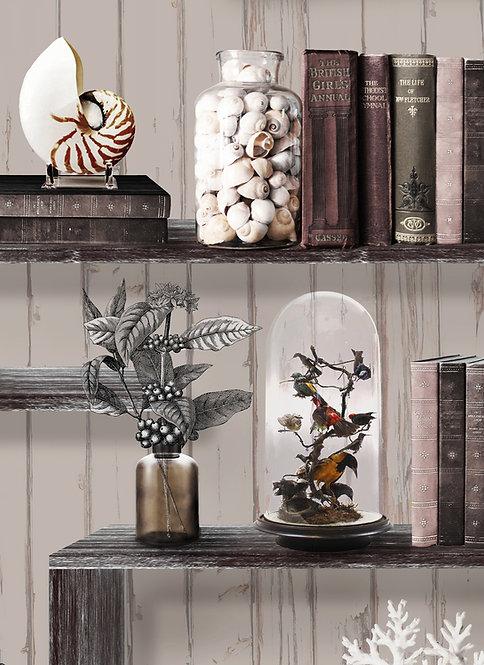 Wallpaper Sample - Curiosity Cabinet - Natural