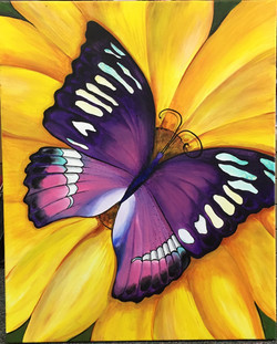 butterfly for sophia.jpg