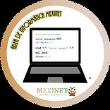 Área de informática MEXINET reemplazo In