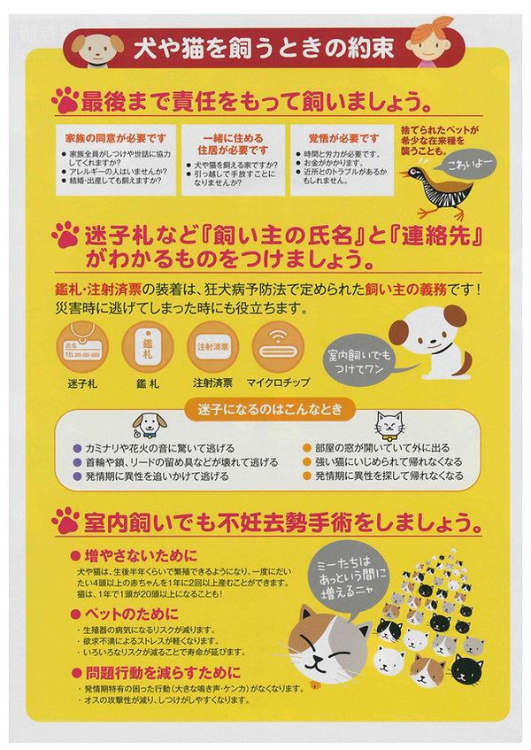kyoScan-3.12.2019-13.43.08-2.j