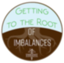 root of imbalances.jpg
