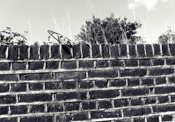 the wall-01.jpg
