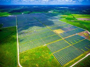 solar field green.jpg