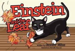 Einstein and the Leaf