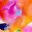 Thumbnail: Orange and Pink Poppy