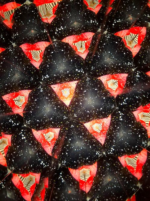 Kaleidoscope No.18
