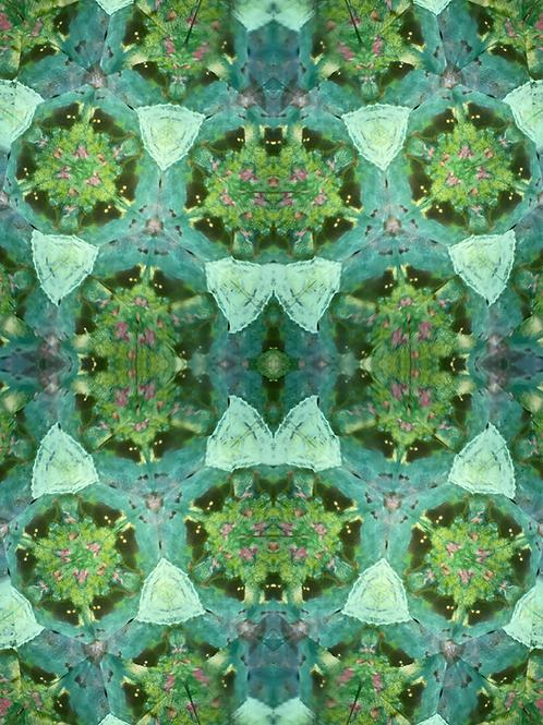 Kaleidoscope No.84