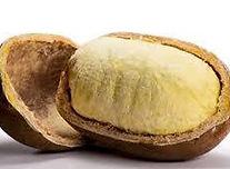 Cupuacu Butter.jpg