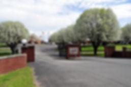 Ezell-Harding Street View
