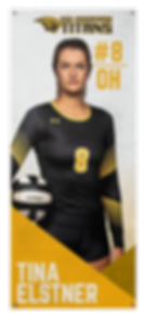 VolleyballBanners-Tina.png