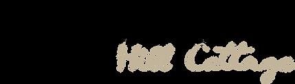 Logo Chip.png