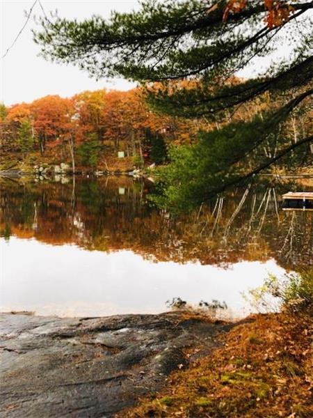 Leonard on the lake 5.jpg