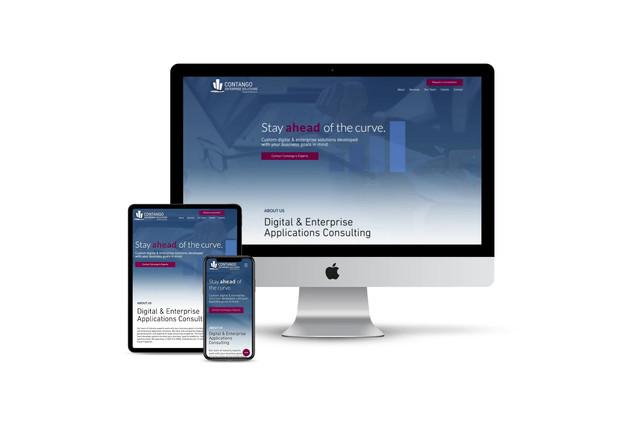 Website Design for IT Consultants