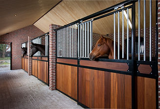 Corton customized horse stalls (1).jpg