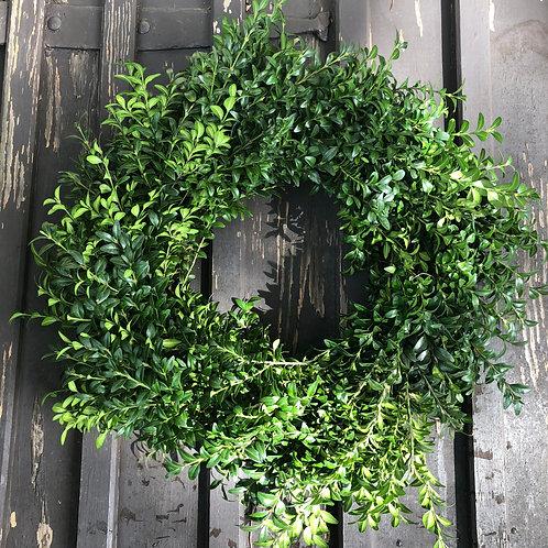 24 inch Boxwood Wreath