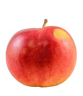 Jonathan Apples - The Virginia Apple Industry