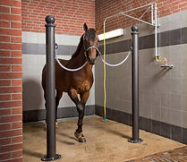 horse stall feeding equipment