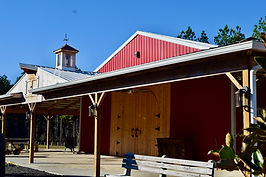 00013Castiglias Barn Venue Nov 2020.jpeg