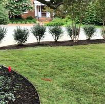 The Rose Gardener Landscaping Fredericksburg Virginia