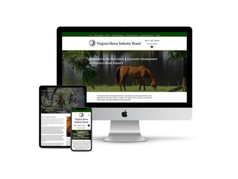 Website Design for State Agency