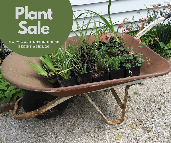Plant Sale.PNG
