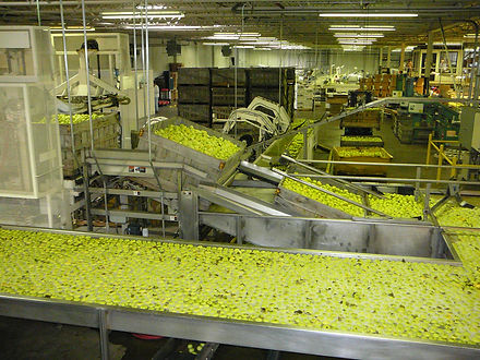 The Virginia Apple Industry