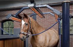 stalls for horses