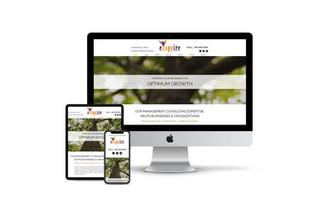 Website Design for Consultant