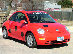Photo Pro Bug Decals