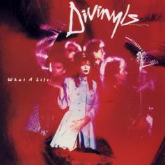 The Divinyls 'What A Life' album (1985)