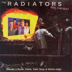 The Radiators 'Feel the Heat' album (1989)