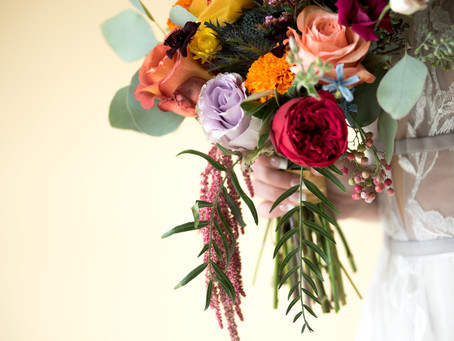 Just Saying Options: low budgets and small weddings