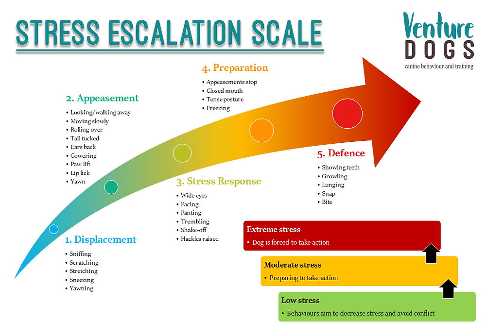 Stress escalation scale for dogs. The scale ascends through increasing stress levels: displacement, appeasement, stress response, preparation, and defence. Each level includes examples of behaviours one might see, such as sniffing, sneezing, lip licking, yawning, pacing, panting, freezing, growling, and biting