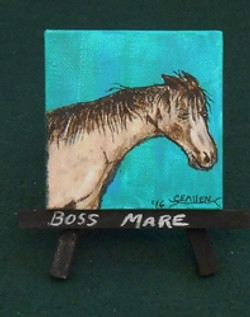Boss Mare