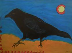 Colorado Corvus