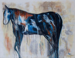 Dripping Horse
