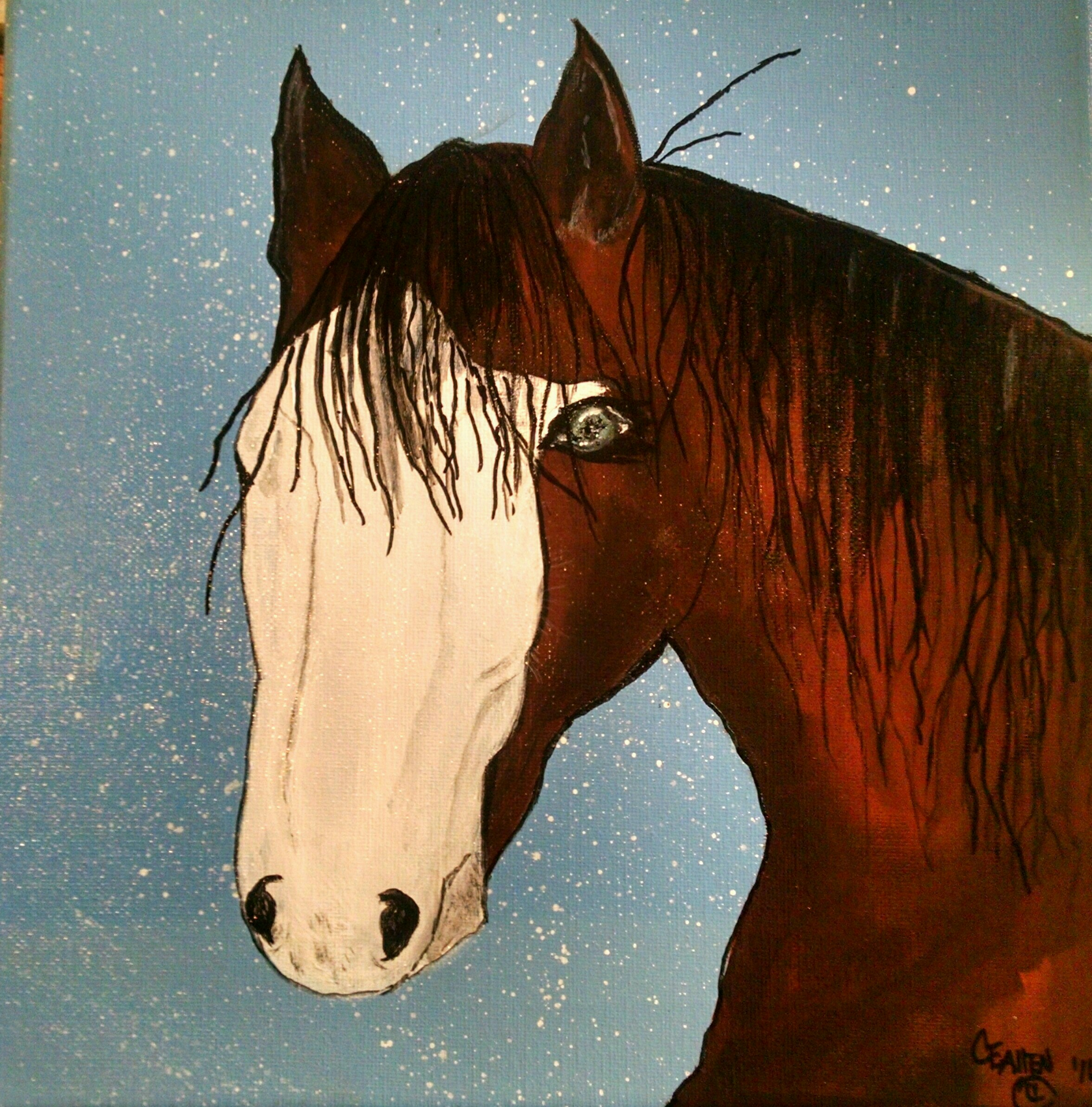 Jim's Horse Chipeta