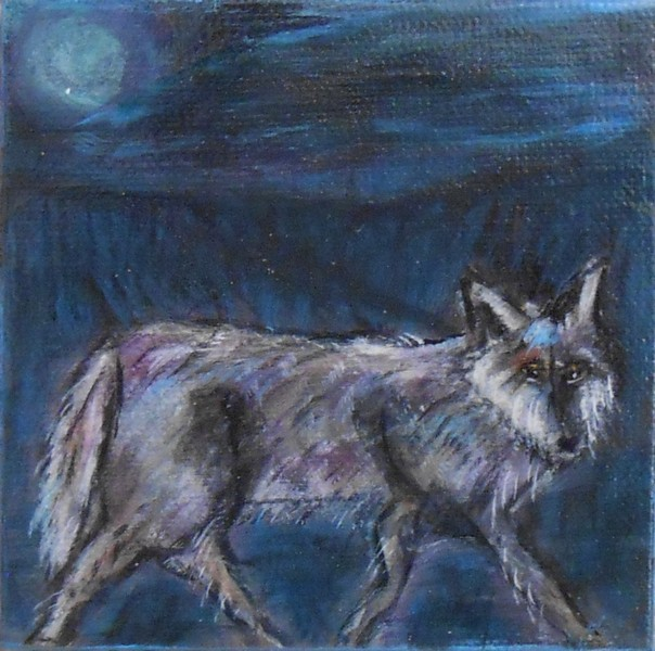 Nocturnal Wanderer