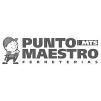 LOGO PUNTO MAESTRO.jpg