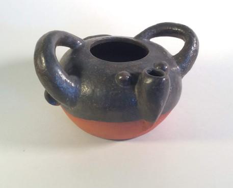 nose spout pot