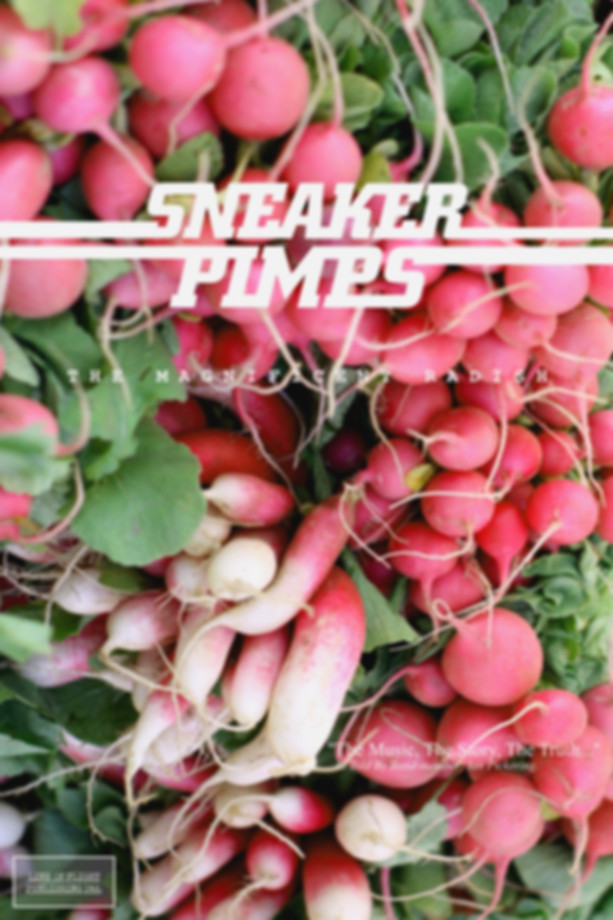 Sneaker Pimps The Magnificent Radish Book
