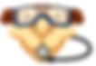 Camel_logo_only.png