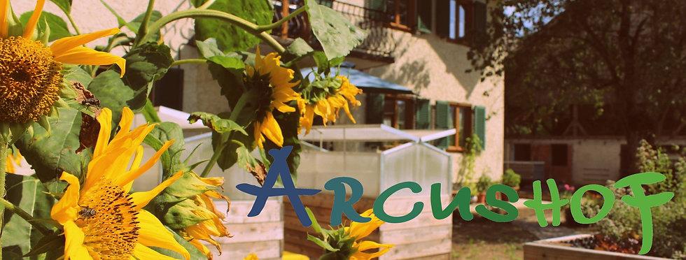 Sonnenblumen_Logo.jpg